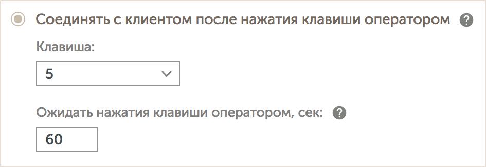 callback_option_dtmf.png